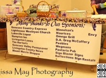 This is a banner for Lissa May Photography.