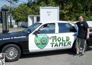The Mold Tamer